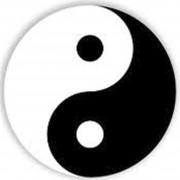 taosymbol